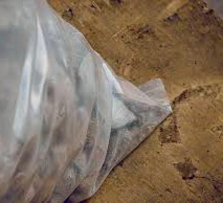 Plástico de invernadero   Geomembrana Plástico tricapa (trifilm)   Plásticos Much   Plástico Silo   Riego (mangas y válvulas para riego)  Plástico Tricapas UV 1T   Plástico Tricapas UV 2T   Plásticos para abejas   Polietileno   Film industrial   Plástico burbuja (PACK AIR)  Bolsas industriales